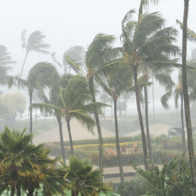 Long Term Psychological Damage of Natural Disasters