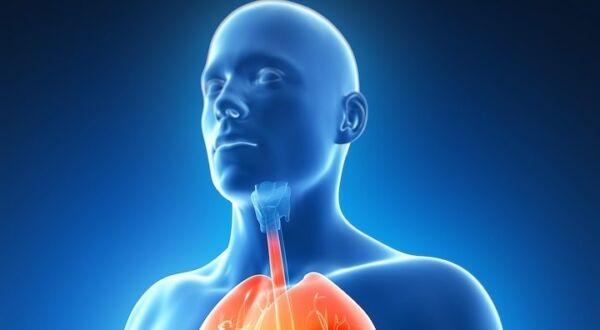 Lung Cancer, No Smoking