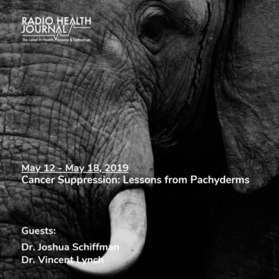 Cancer Suppression: Lessons from Pachyderms