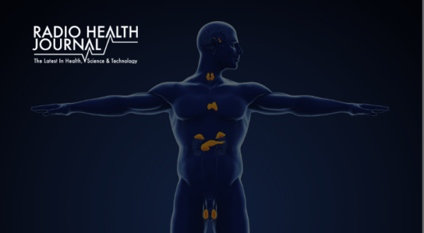 How Hormones Control Our Lives